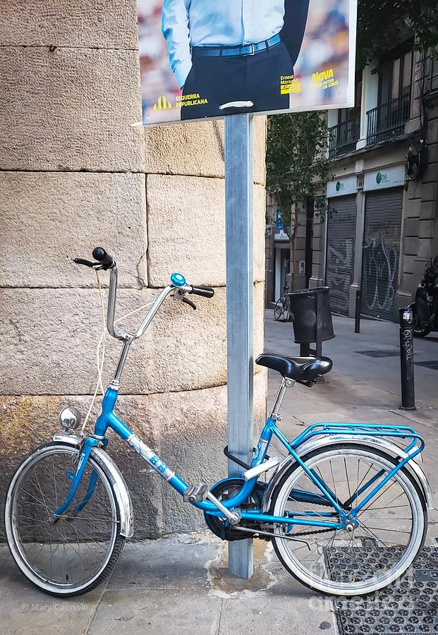 Bicycle Blue by Mary Capriole