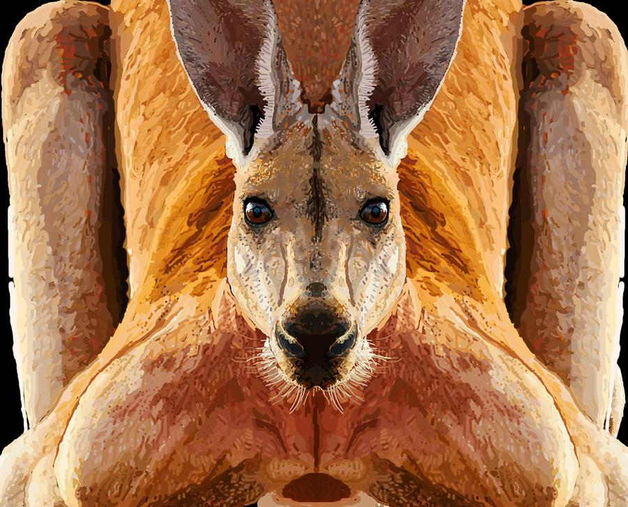 Kangaroo Drawing - Big Boy Red Kangaroo   by Joan Stratton