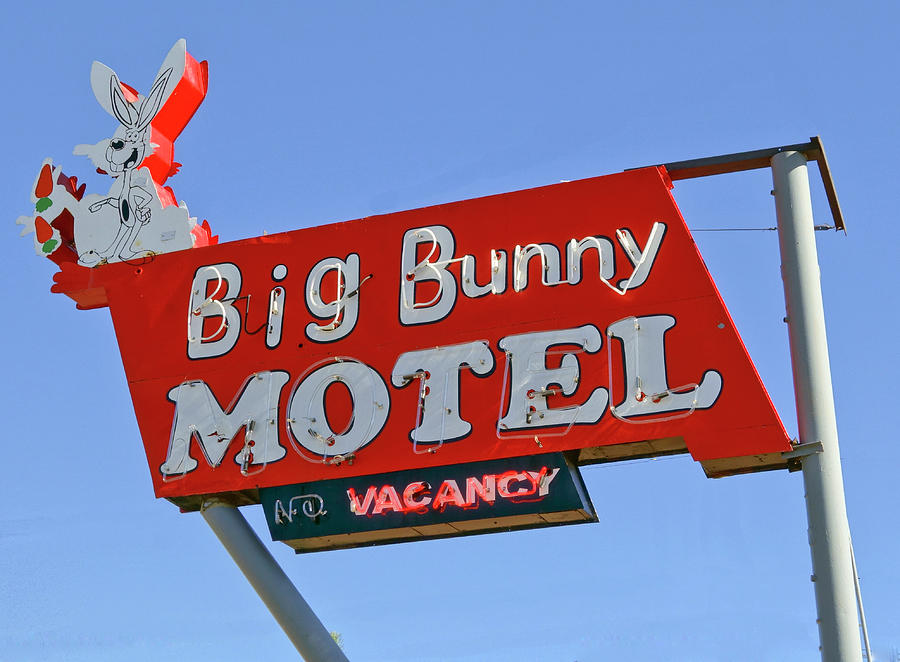Big Bunny Motel by Matthew Bamberg