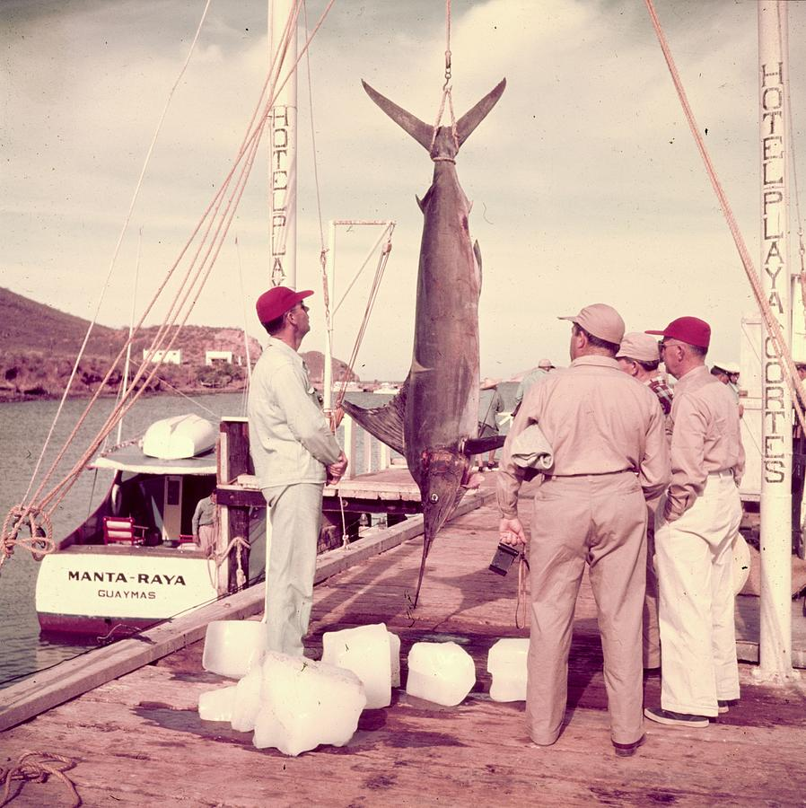 Big Catch Photograph by Slim Aarons