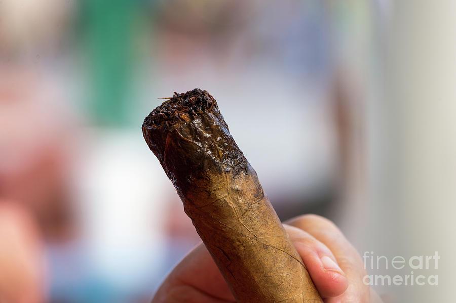 Big Cigar by Les Palenik