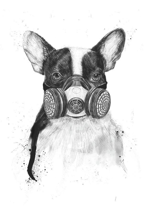Dog Drawing - Big city life by Balazs Solti