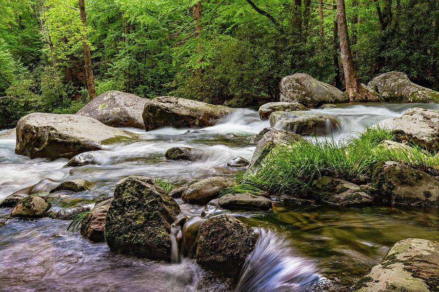 Big Creek by Larry Waldon