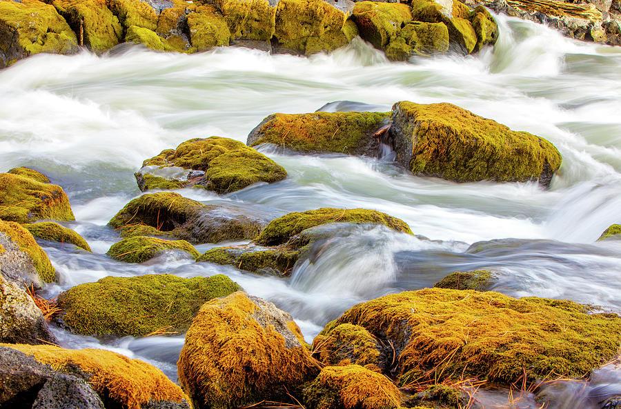 Big Eddy Deschutes River Oregon Art Print by David Millenheft