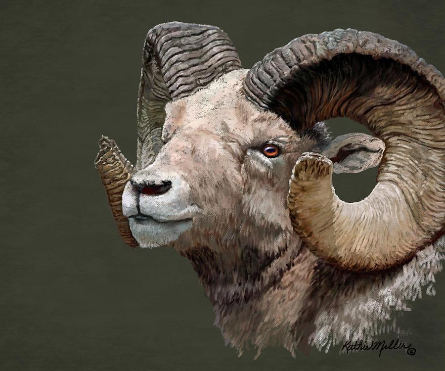 Big Horned Sheep by Kathie Miller