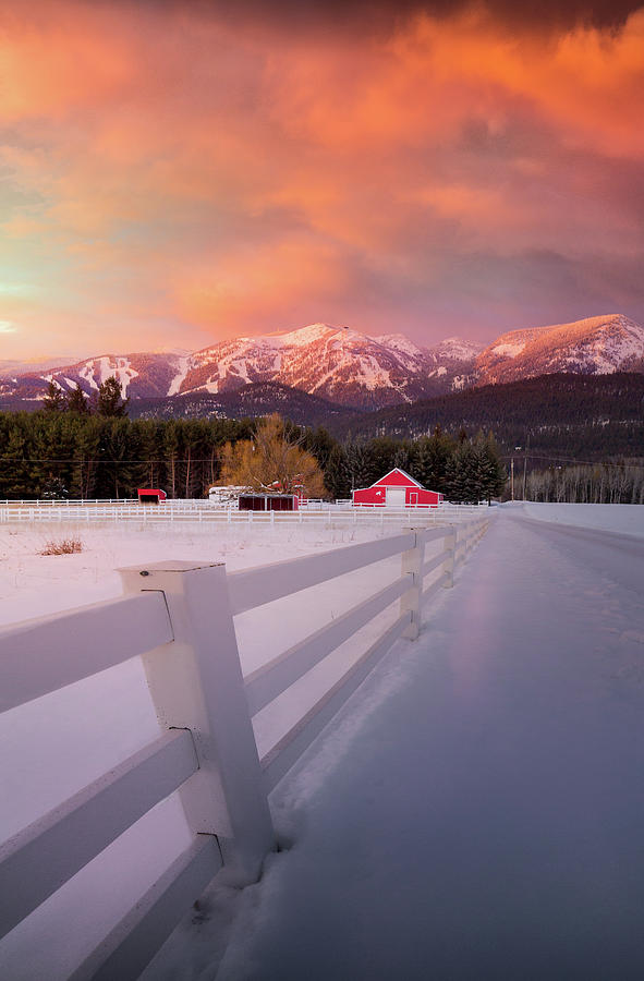 Big Mountain Winter Splendor / Whitefish, Montana  by Nicholas Parker