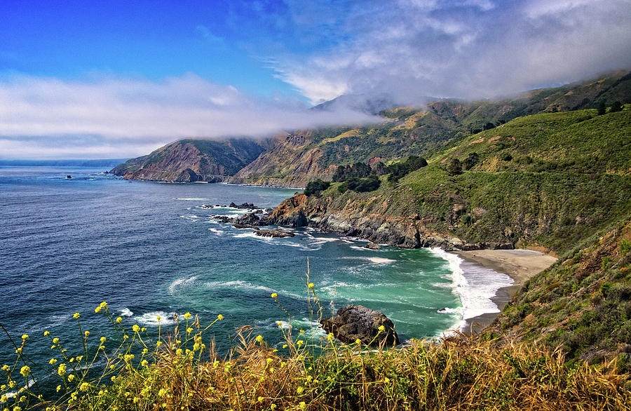 Big Sur Coast by Carolyn Derstine