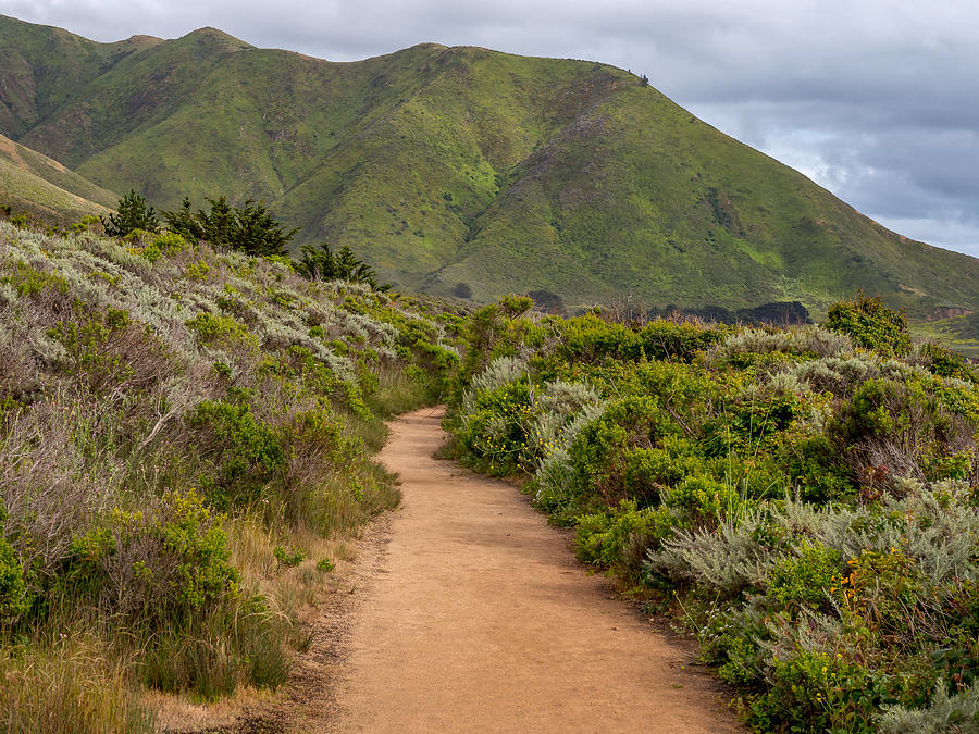 Big Sur Trail by Derek Dean