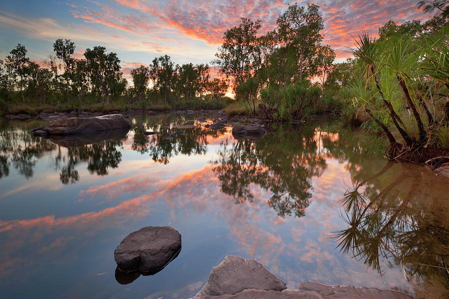 Billabong Or Small Pond At Manning Photograph by Sara winter