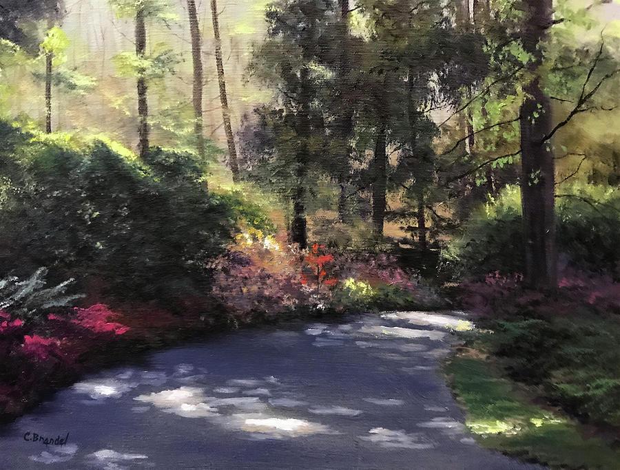 Biltmoore Drive by Cecilia Brendel