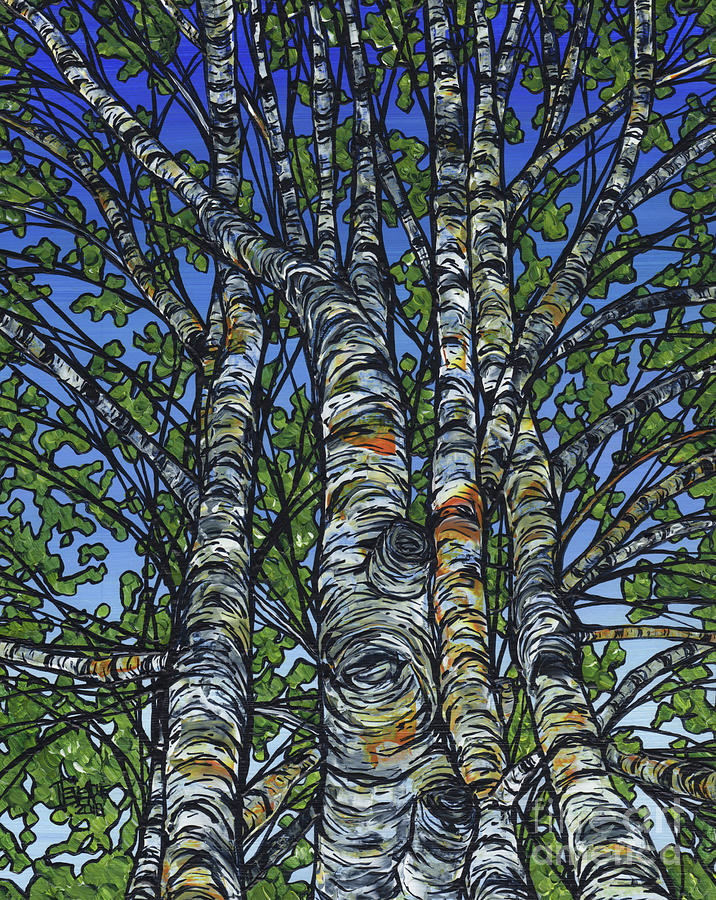 Birch Cluster by Tracy Levesque