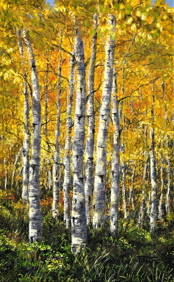 Birch of East Glacier by Lee Tisch Bialczak