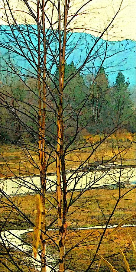Birch Pair by Robert Bissett