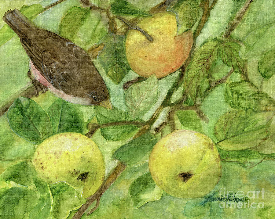 Bird and Golden Apples by Laurie Rohner