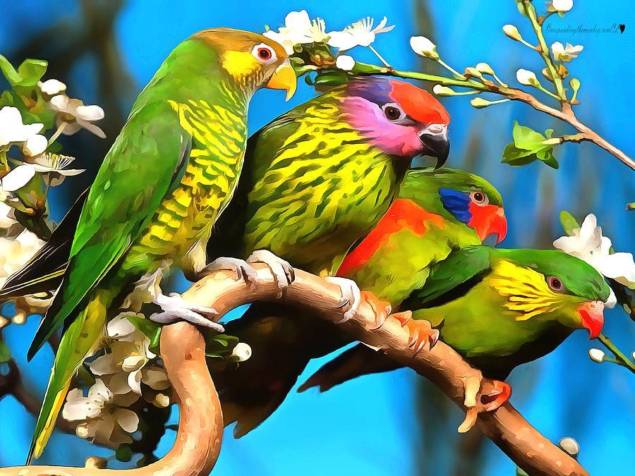 Bird Animal In Acrylic by Catherine Lott