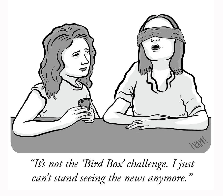 Bird Box Drawing by Ivan Ehlers
