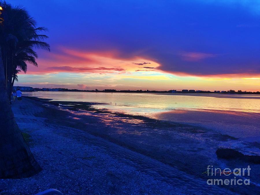 Sunset Photograph - Bird Key Park Sunset by Gary F Richards