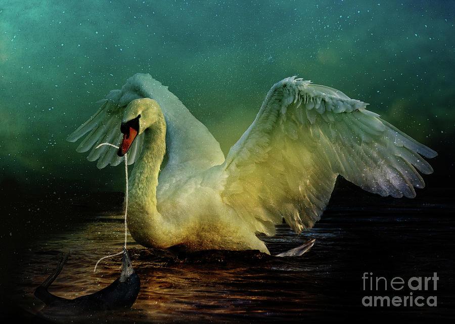 Swan Digital Art - Bird Kingdom 6 by Johan Lilja