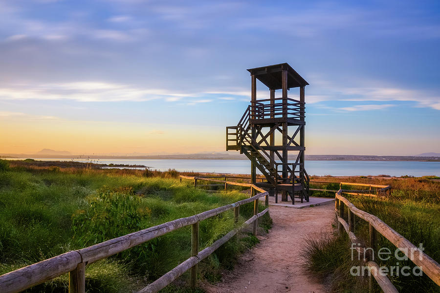 Bird Observation Tower by Fine Art On Your Wall