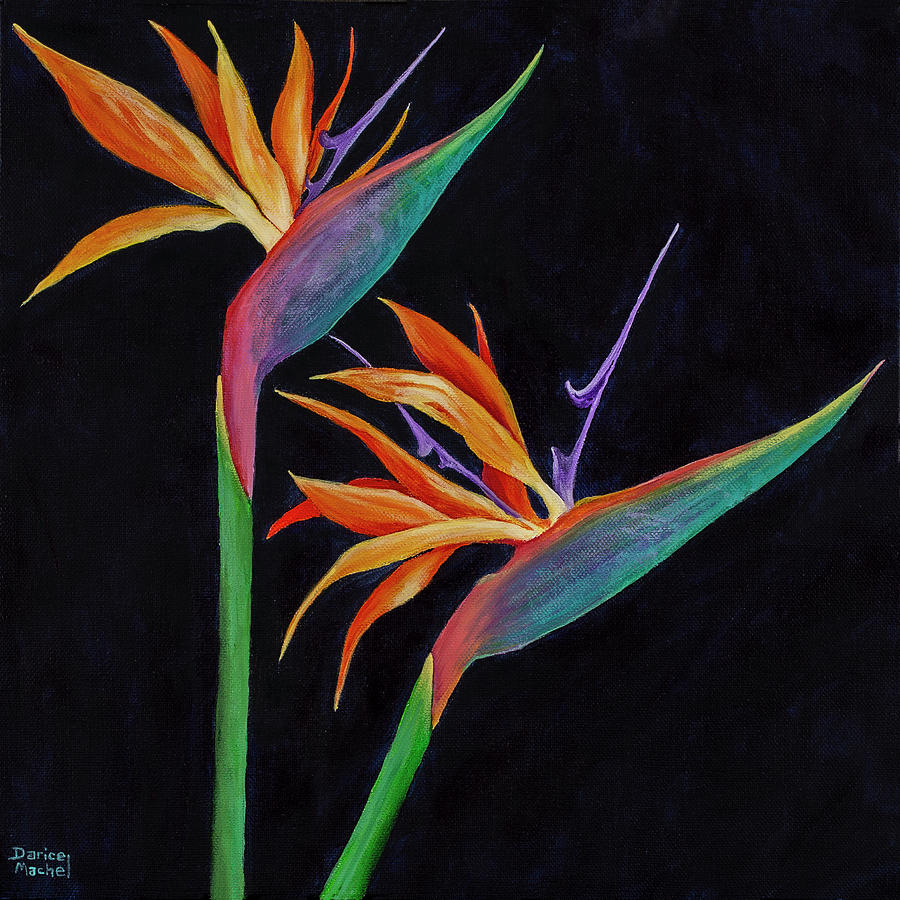 Bird Of Paradise 1 by Darice Machel McGuire