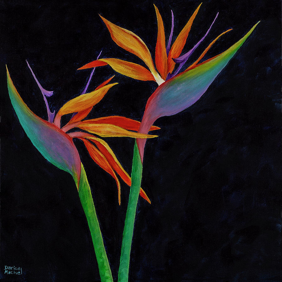 Bird Of Paradise 2 by Darice Machel McGuire