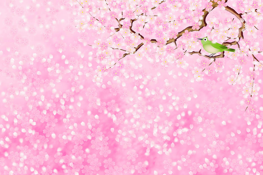 Bird Sitting On Branch Of Cherry Blossom Digital Art by Imagewerks