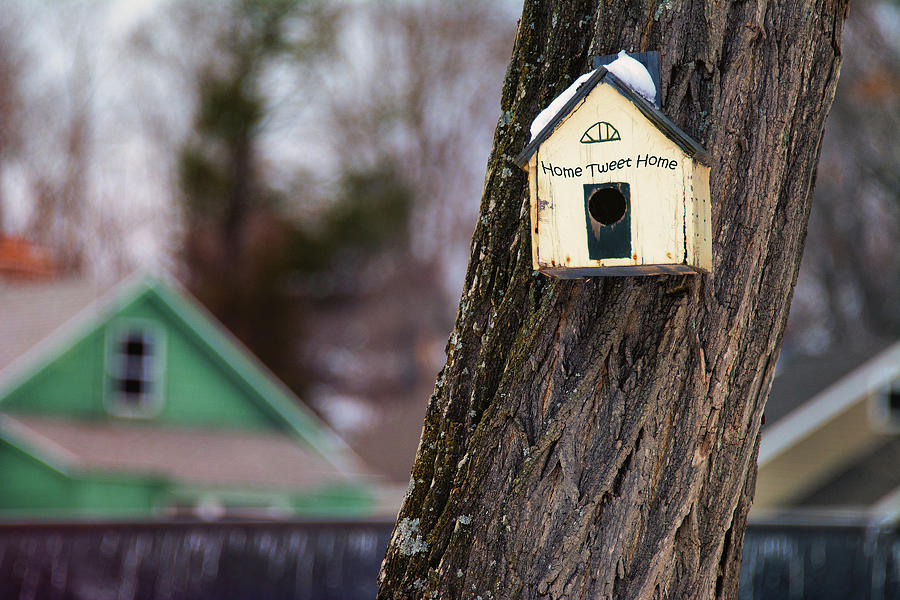 Birdhouse with Home Tweet Home sign by Phil Cardamone