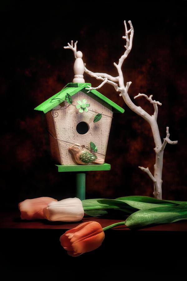 Birdhouse Photograph - Birdhouse With Tulips by Tom Mc Nemar