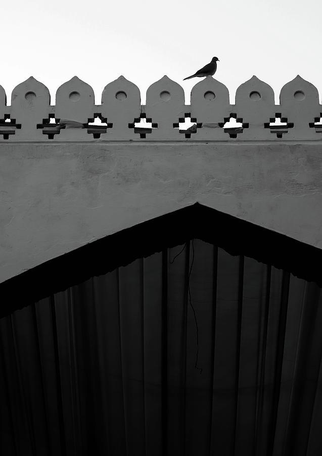 Birds and Patterned Side Rail Shot 1 by Prakash Ghai