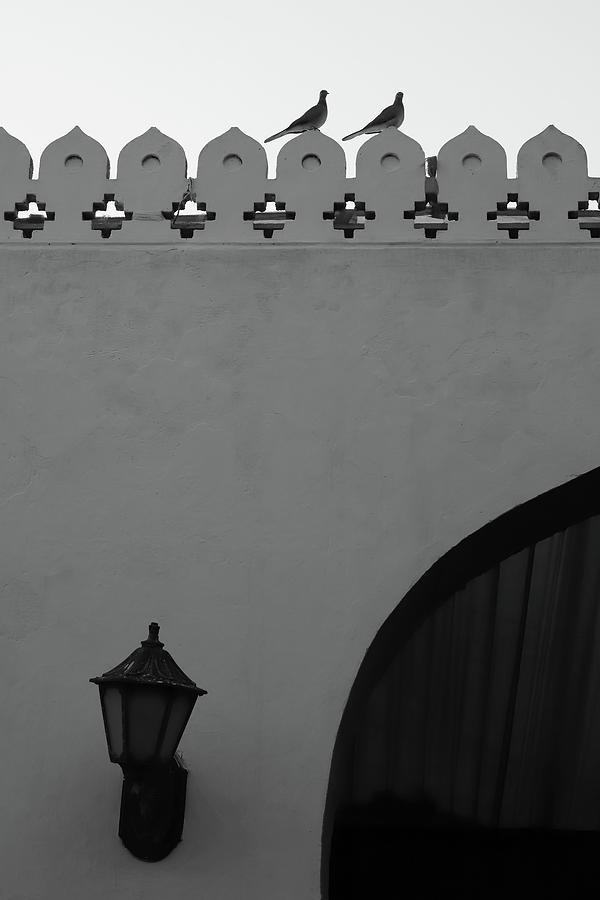 Birds and Patterned Side Rail Shot 2 by Prakash Ghai