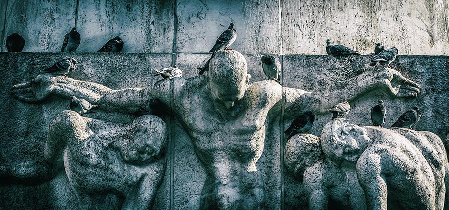 Birds As Masters by George Grigoriadis