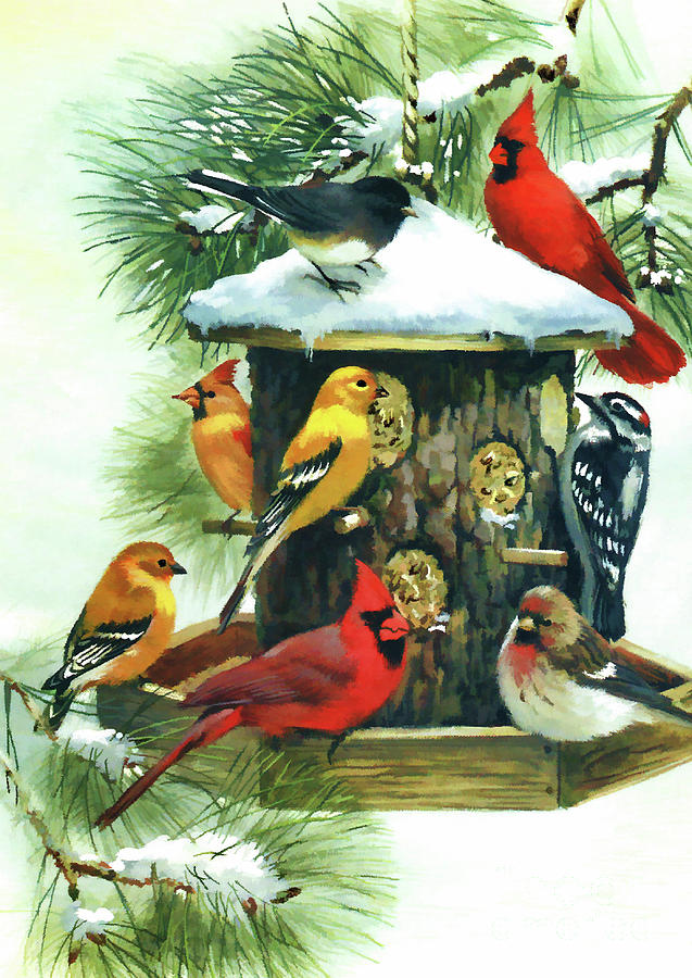 Birds At The Feeder by D Hackett