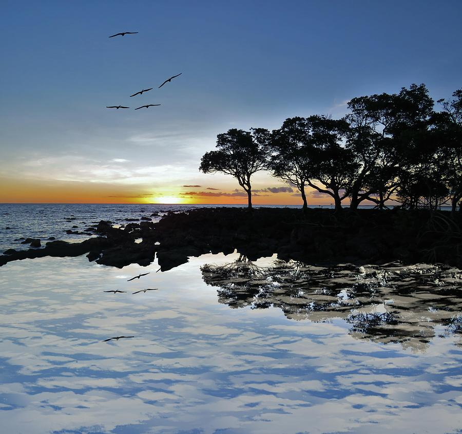 Weipa Photograph - Birds Fly The Beach Sunset Reflection by Joan Stratton
