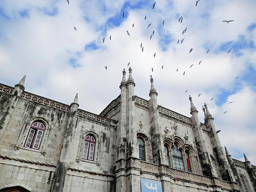 Birds flying above Jeronimos Monastery by Pema Hou