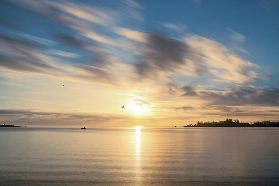 Birds flying at goden hour at Anse Vata Bay in New Caledonia by Daniela Constantinescu