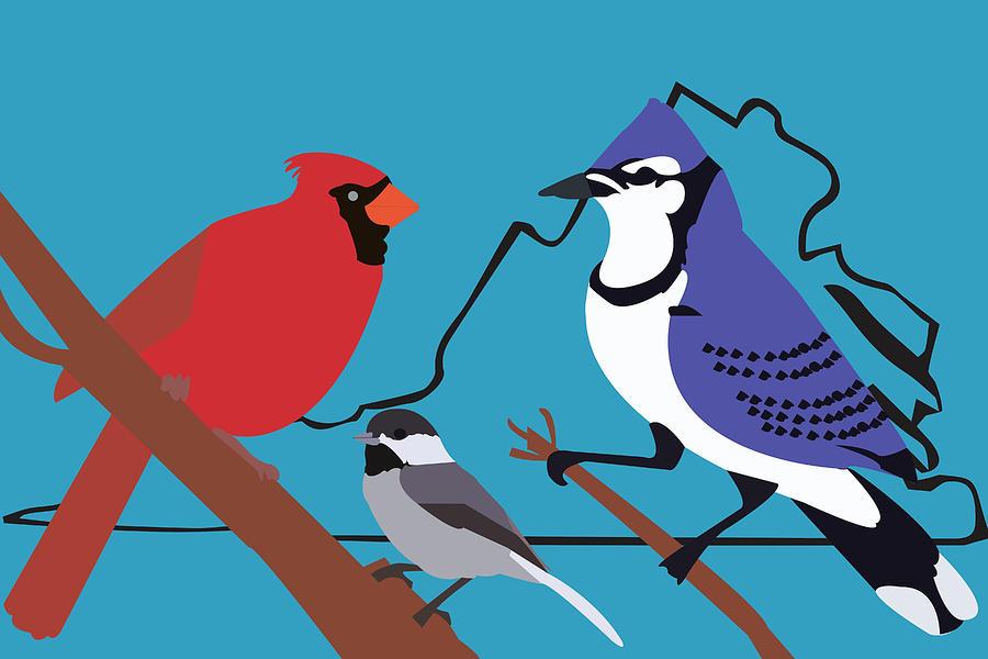 Birds of Virginia by Caroline Elgin