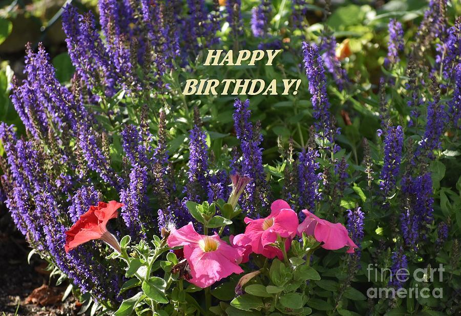 birthday flowers by Christina Verdgeline