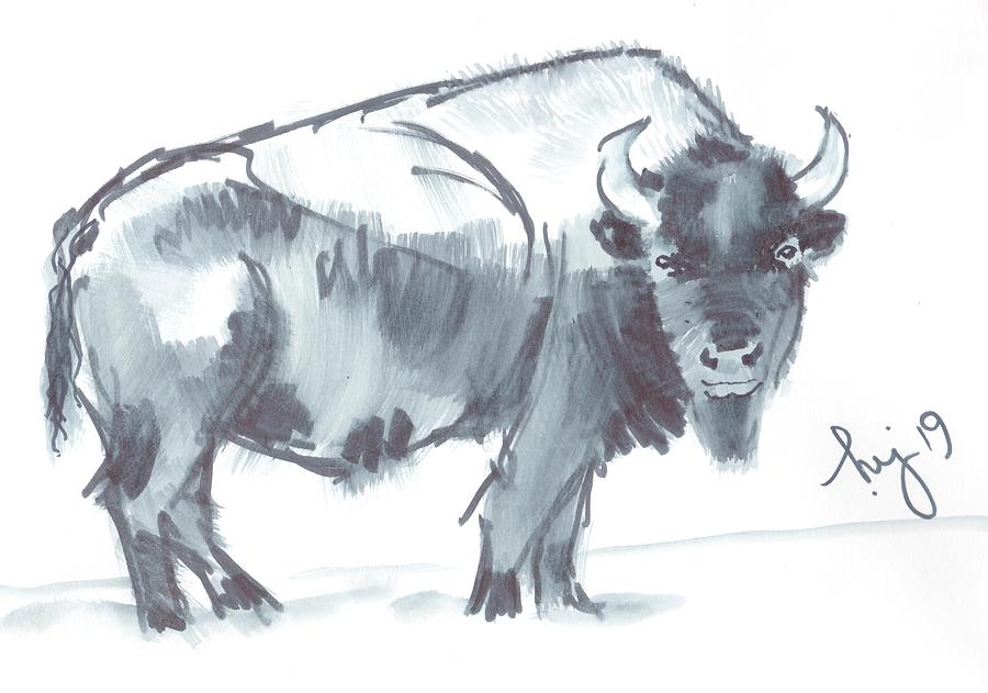 Bison black and white watercolor sketch by Mike Jory