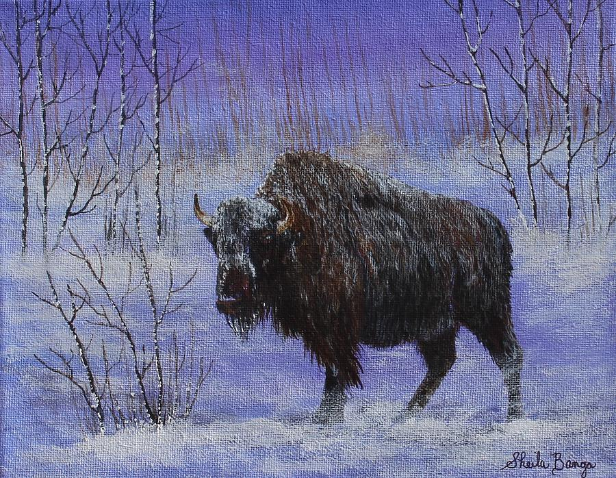 Bison in Winter by Sheila Banga