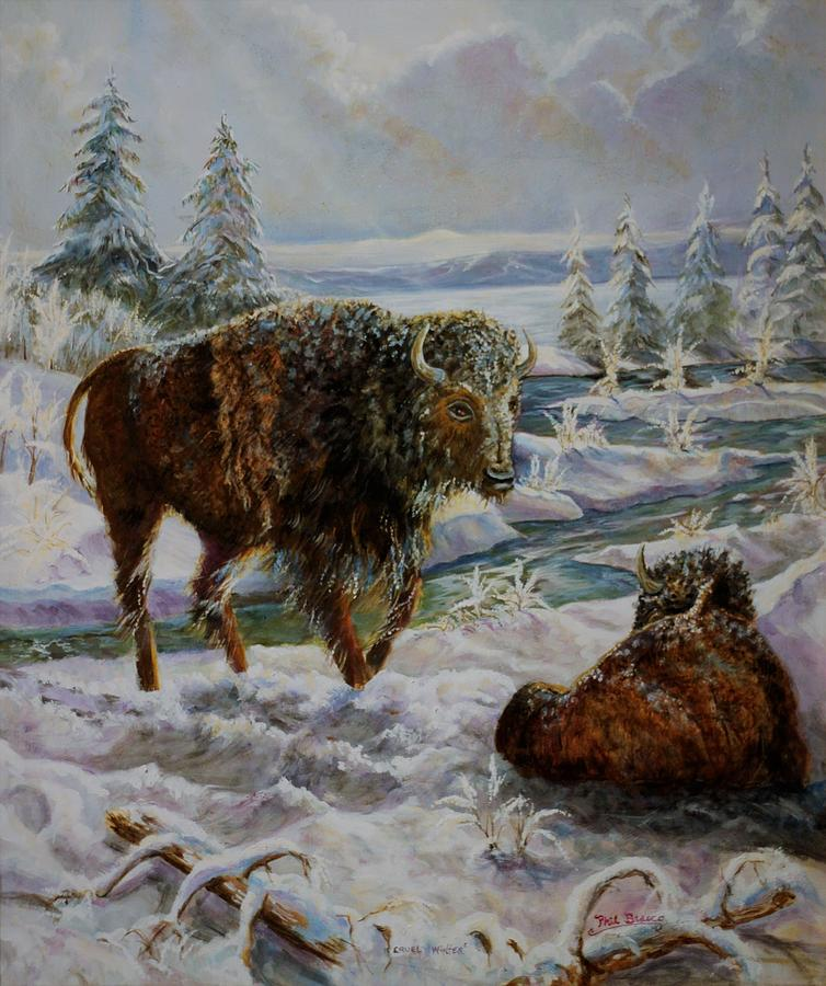 Bison In Yellowstone In The Winter by Philip Bracco