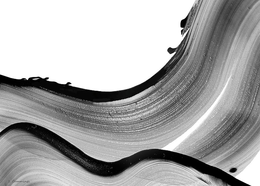 Black And White Abstract Art - Black Magic 39 - Sharon Cummings by Sharon Cummings