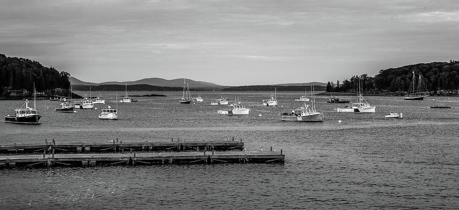 Black And White Bar Harbor Boats by Dan Sproul