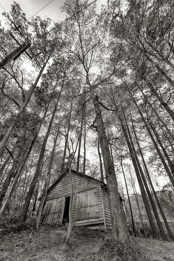 Black and White Barn #2550 by Susan Yerry