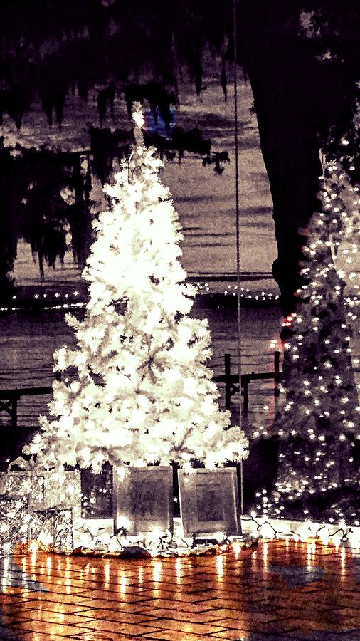 Black and White Christmas by Gary Smith