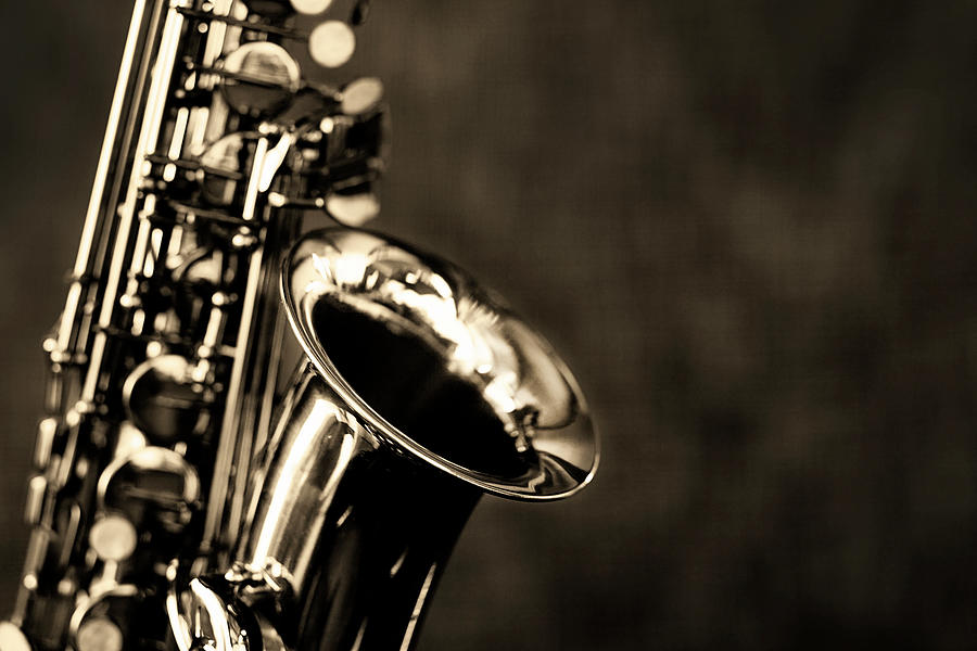 Black And White Close Up Of Alto Photograph by Rapideye