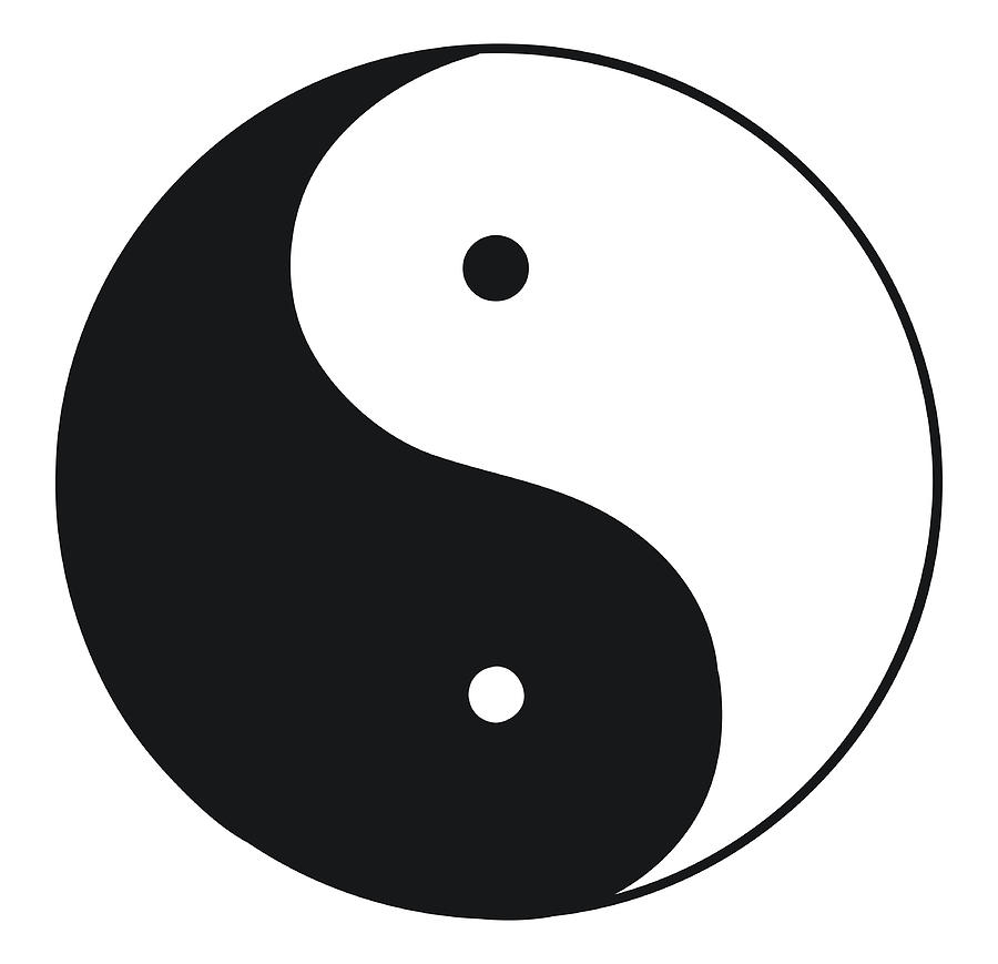 Black And White Illustration Of Tai Chi Digital Art by Dorling Kindersley