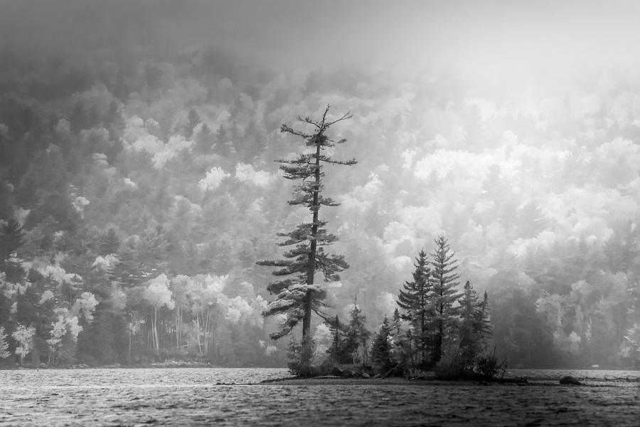 Black And White Moody Morning Moosehead Lake by Dan Sproul