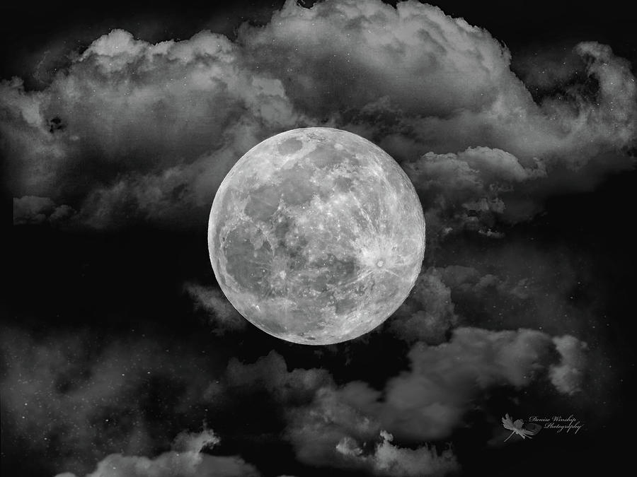 Black and White Moon by Denise Winship
