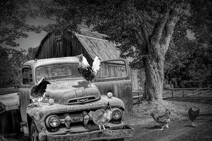 Black and White of Old Vintage Ford Truck with Chickens by Randall Nyhof
