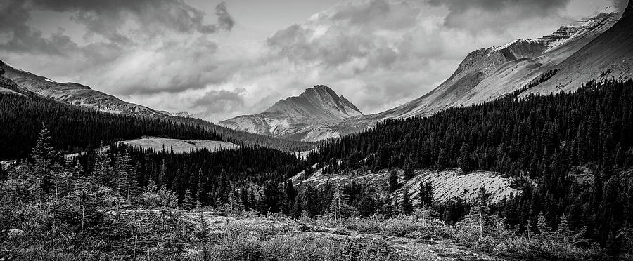 Black And White Panorama Alberta Mountains by Dan Sproul
